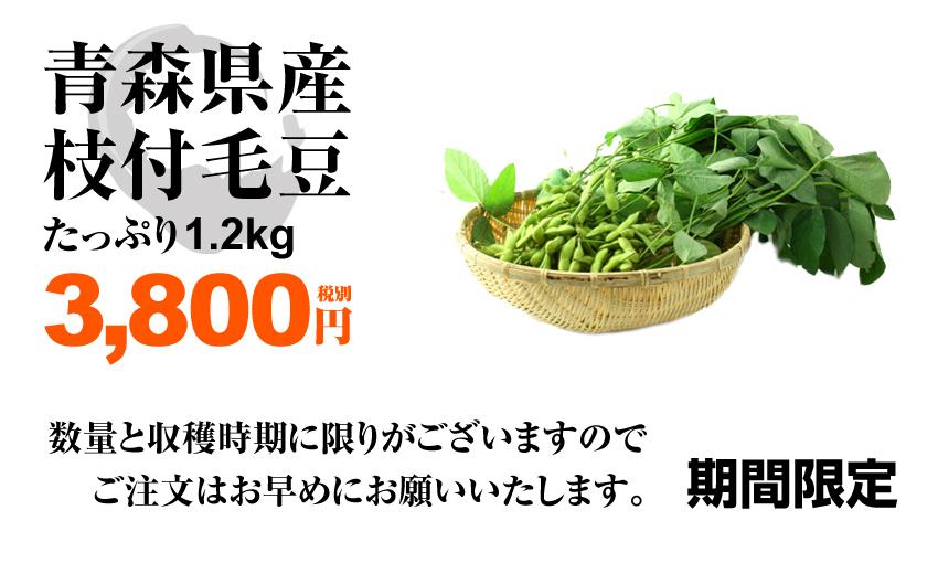 青森毛豆販売 毛豆.comダイレクトショップ